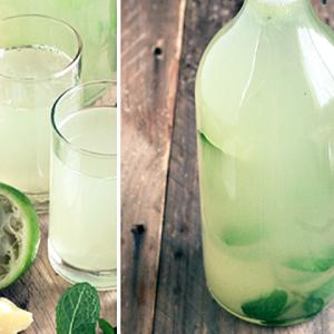 refereshing limeade drink